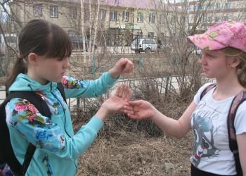 Всероссийский единый фенологический день